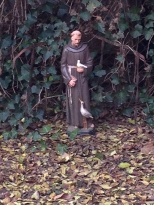 Saint Francis, in my back yard, this morning.
